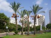 Israel Modern Homes